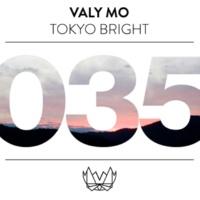Valy Mo Reflection (feat. Fuuku)