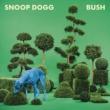 Snoop Dogg ブッシュ