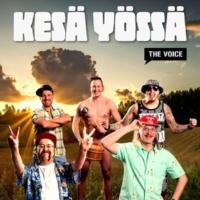 Brädi, Stig, Setä Tamu, Kuningas Pähkinä, Oku Luukkainen ja Millionaire Men Kesä yössä