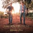 João Bosco & Vinicius João Bosco & Vinicius E Seus Ídolos - Estrada De Chão