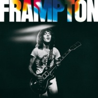 Peter Frampton Penny For Your Thoughts