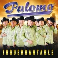 Palomo Mi Uno Y Mil Detalles