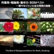 浜崎 vs 浜崎 作業用・勉強用・集中力 BGMベスト ~様々なジャンル全6時間の曲集~