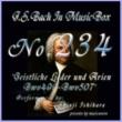 石原眞治 バッハ・イン・オルゴール234 /宗教的歌曲とアリア BWV499からBWV508