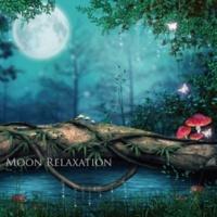 STALAG 月の引力で神秘的に変化するポリネシアの自然とミニマルアンビエントの魔法 ~ Moon Relaxation(ムーンリラクゼーション)
