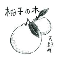 天野月 柚子の木