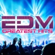 アヴィーチー EDM GREATEST HITS
