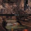 Darkest Hour The Mark of The Judas (Remastered)