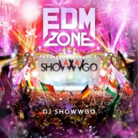 V.A. EDM ZONE Mixed by DJ shoWWgo