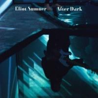 Eliot Sumner After Dark