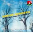 サウリュス・ソンデツキス/リトアニア室内管弦楽団 ディヴェルティメント 第 7番 ニ長調, K. 205: 1. Largo - Allegro