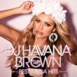 ハヴァナ・ブラウン DJ ハヴァナ・ブラウン CLUB MIX - BEST MEGA HITS -