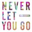 Rudimental Never Let You Go (Official Video)