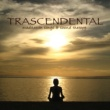 Meditation Guru Trans Meditation Music: Songs & Sound Therapy for Mind Power, Relaxation & Stress Relief