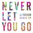 Rudimental Never Let You Go (Remixes)