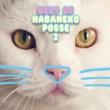 Various Artists ベスト オブ ハバねこポッセ 2
