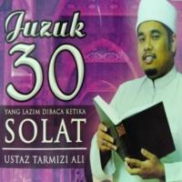 Ustaz Tarmizi Haji Ali An-Nasr