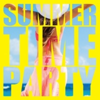 PARTY HITS PROJECT Summer