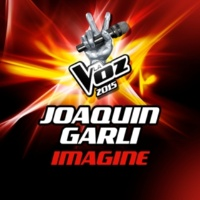 Joaquín Garli Imagine [La Voz 2015]