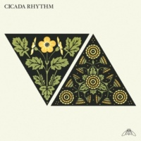 Cicada Rhythm Do Not Destroy