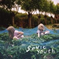 Sonic Youth Radical Adults Lick Godhead Style