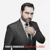 Marco Rodrigues Rosinha Dos Limões