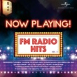 Various Artists Now Playing! FM Radio Hits, Vol. 2