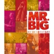 MR.BIG Green-Tinted Sixties Mind 2014 BUDOKAN Ver.