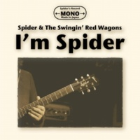 Spider Tetsu Djander