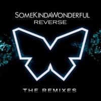 SomeKindaWonderful Reverse [Frey Remix]