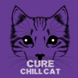 CHILL CAT Intro