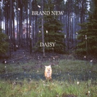 Brand New You Stole