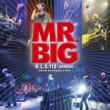 MR.BIG Green-Tinted Sixties Mind 2014 SENDAI Ver.