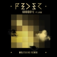 Feder Goodbye (feat. Lyse) [Wolfskind Remix]