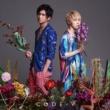 CODE-V 衝動