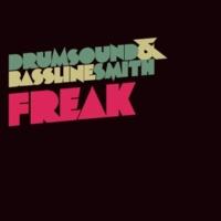 Drumsound & Bassline Smith Freak (Radio Edit)