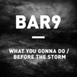 Bar9 What You Gonna Do / Before The Storm