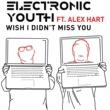 Electronic Youth Wish I Didn't Miss You (feat. Alex Hart)
