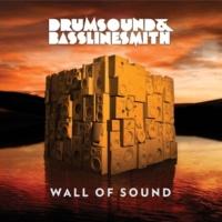 Drumsound & Bassline Smith Through The Night (Bare Noize Remix)
