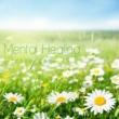 Natural Healing Mental Healing - こころが安らぐ音楽-