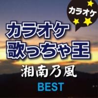カラオケ歌っちゃ王 ガチ桜 (オリジナルアーティスト:湘南乃風) [カラオケ]