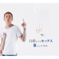 翼 a.k.a. t-Ace Simple