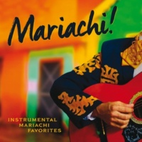 The Mariachi Boys South Of The Border