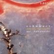 高橋アキ シューベルト:ピアノ・ソナタ D.958&D.959