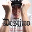 DESTINO Still Dreamer