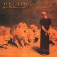 The Sound Judgement