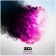 Zedd/Jon Bellion Beautiful Now (feat.Jon Bellion) [Big Gigantic Remix]