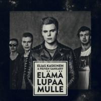Elias Kaskinen & Päivän Sankarit Puumaja