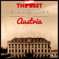 Bielsko Baroque Chamber Academy Der Rosenkavalier Waltzes, Op. 59