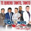 Grupo Bryndis/Diana Reyes Te Quiero Tanto, Tanto (feat.Diana Reyes)